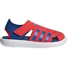 adidas Vand sandaler Børn, rød/blå